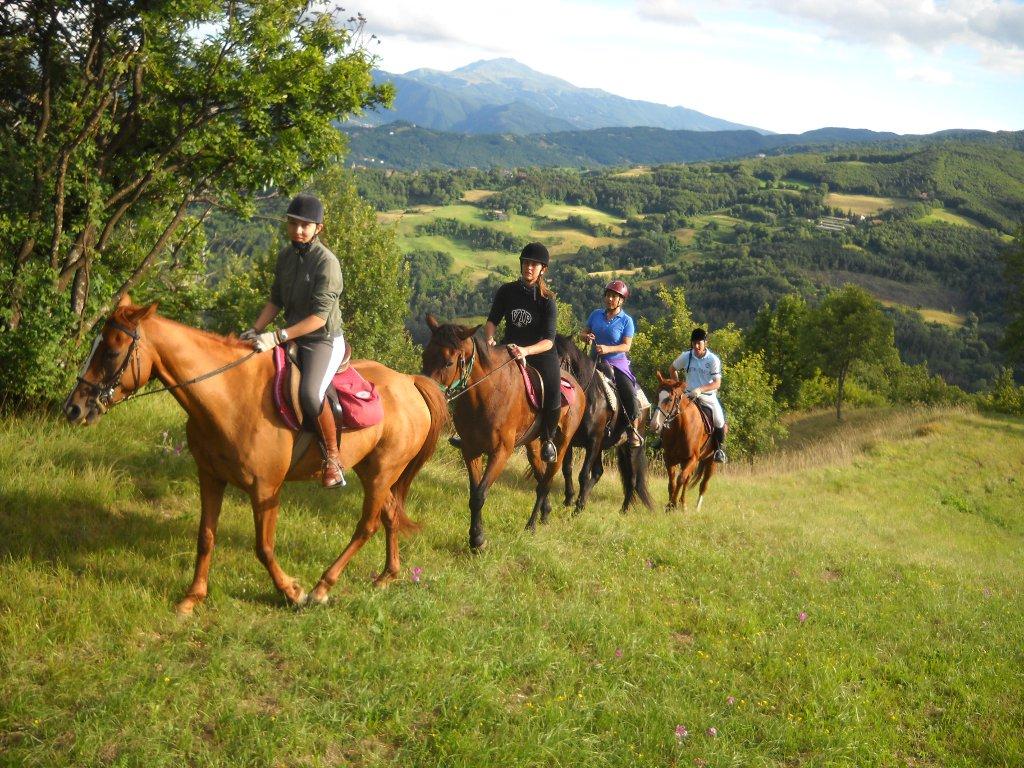 cavalli_turismo_viaggi_agosto_2013
